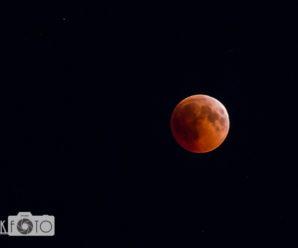 Полювання на червоний місяць